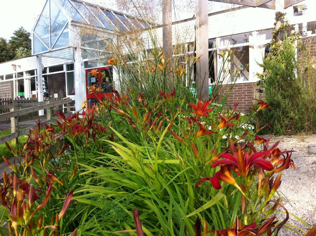 Garden design courses in hampshire for Landscape design courses