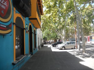 The tree lined streets of Mendoza
