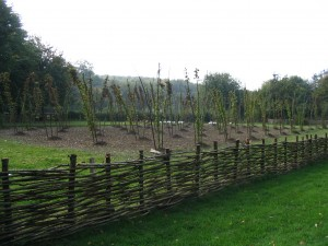 The ancient craft of hurdle making produced from hazel coppice on display at the Weald and Downland museum