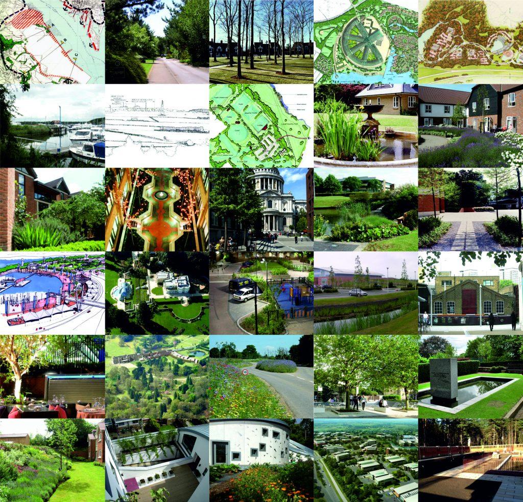 Celebrating 30 years terra firma landscape architects for Terra firma landscape architecture