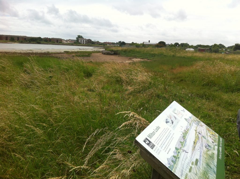 Hidden routes of portsmouth an urban hike by alice for Terra firma landscape architecture