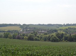 Chiltern and South Bucks, Capacity Study, Landscape Consultants
