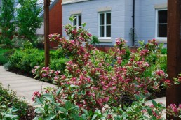 Churchill Retirement Living, Residential, Landscape Architecture