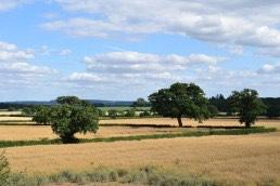 West Berkshire District Council, Landscape Capacity Assessment, Landscape Visual Assessment