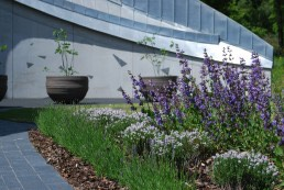 Maggies Cancer Care Centre, Landscape Architecture, Swansea