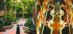 Curzon Street, Mayfair, Landscape Architecture, Residential