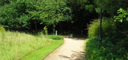 Hampshire Corporate Park, Landscape Architecture, Corporate & Commercial