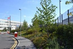 Origin Business Park, Corporate, Commercial, Landscape Architecture