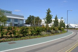 Origin Business Park, Corporate, Commercial, Landscape Architecture