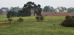 Sutton Hoo, Heritage & Gardens, Suffolk